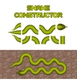 Green snake body elements vector image