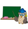 owl teacher with blackboard vector image vector image