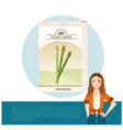 pack of asparagus seeds icon vector image