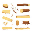 planks from trees and different wood elements for vector image