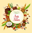 poster of nuts grain and seeds vector image vector image