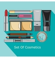 set of cosmetics in style flat vector image
