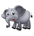 A gray elephant vector image