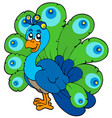cartoon peacock vector image