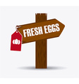 fresh eggs vector image vector image