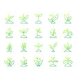 grass simple color line icons set vector image vector image