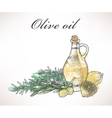 Olive oil and rosemary vector image