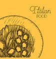 olive plant drawn italian food vector image