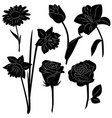 set of black silhouettes of flowers isolated on a vector image
