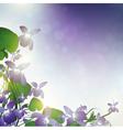 wild violet vector image vector image