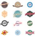 Vintage badge logo set vector image