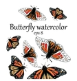 Monarch Butterfly watercolor pattern vector image vector image
