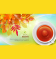 mug of black tea against the background of autumn vector image vector image