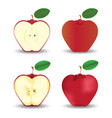 red apples fruit concept vector image vector image