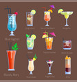 set alcoholic cocktails isolated fruit cold vector image vector image