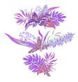 vintage summer set of wreath vector image vector image