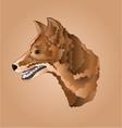 Brown dog head domestic animal vector image