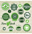 Collection green labels badges and icons vector image vector image