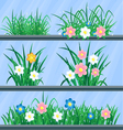 Grass and flowers set of elements for your vector image vector image