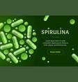 green spirulina pills concept banner horizontal vector image vector image