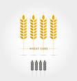 isolate icon of wheat ears vector image
