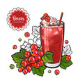 red currant smoothie in sketch style isolated on vector image