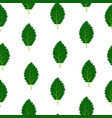 seamless pattern with green summer leaves vector image vector image
