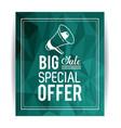 shopping big sales and discounts vector image