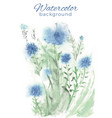 watercolor background with flowers and grass vector image
