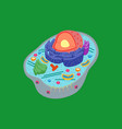 cartoon animal cell anatomy banner card poster vector image vector image