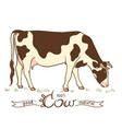 cow in a meadow vector image