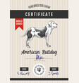 dog show certificate with american bulldog vector image vector image