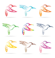 group of hummingbird vector image vector image