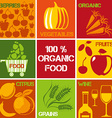 Organic Produce Icons vector image vector image