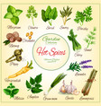poster of spice seasonings herb flavorings vector image vector image
