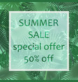 the summer sale poster in a frame on the vector image