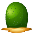 A plain cactus vector image vector image