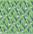 blooming snowdrops seamless pattern floral vector image