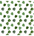colorful naturalistic green leaves on branch vector image vector image