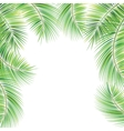Palm tree branches vector image vector image