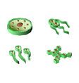 set of bacteria and virus isometric icons vector image vector image
