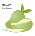 thai mango vector image vector image