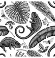 tropical plants and animals seamless pattern vector image