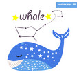 whale constellation vector image vector image