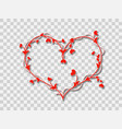 red heart on a transparent background vector image vector image