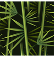 Seamless bamboo pattern vector image vector image