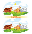 a herd of cows grazing in the meadow vector image