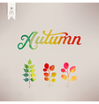 Autumn watercolor lettering Abstract hand drawn vector image vector image