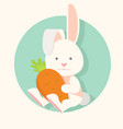 flat funny bunny happy with carrot vector image