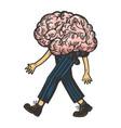 human brain walks on its feet sketch vector image vector image